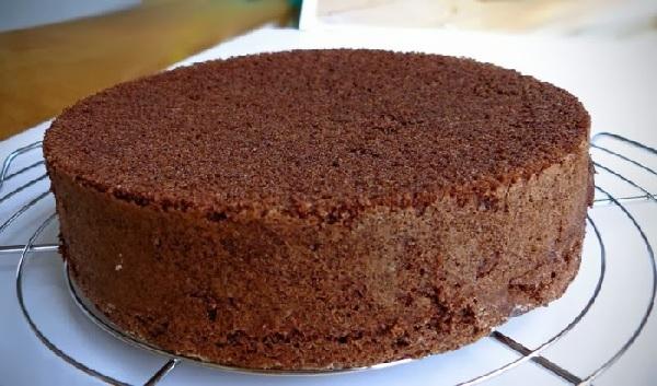 Bolo pão de Ló de Chocolate Levíssimo