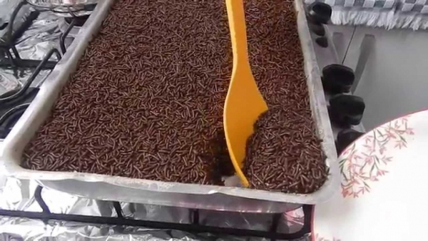 Torta de chocolate simples