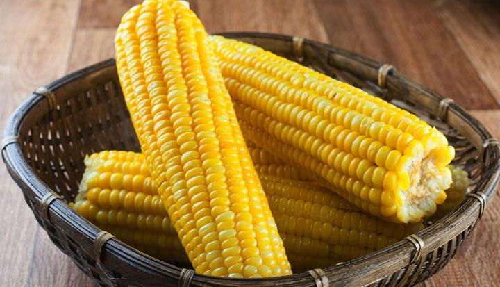 Resultado de imagem para milho cozido no micro